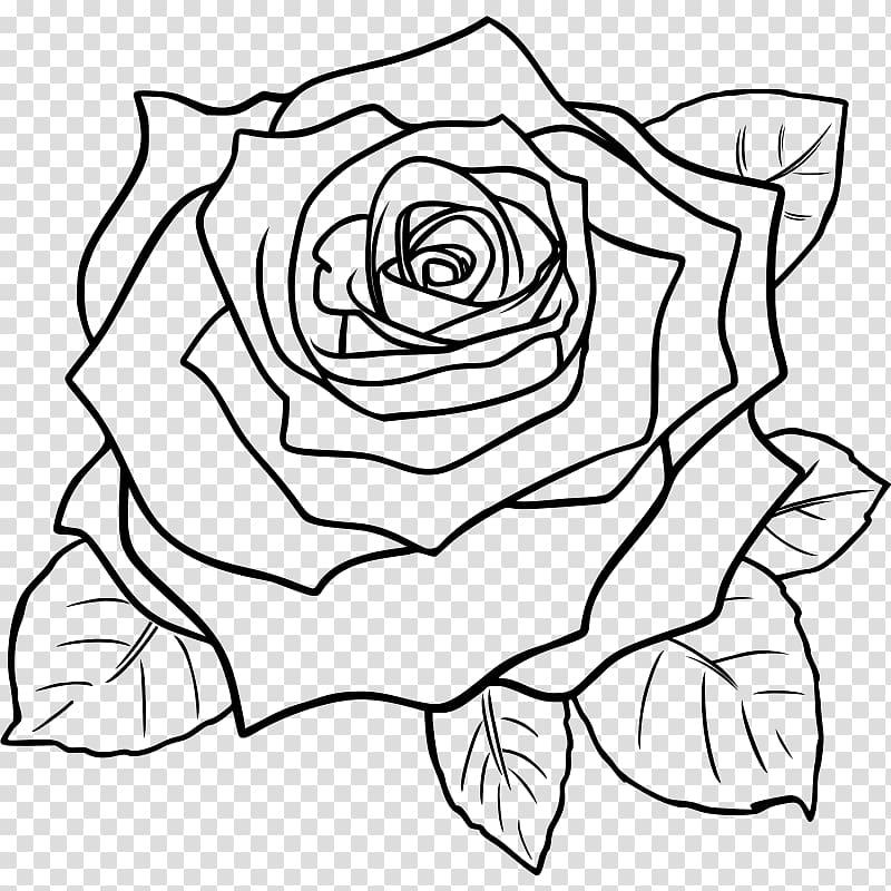 Black rose Drawing , rose transparent background PNG clipart.