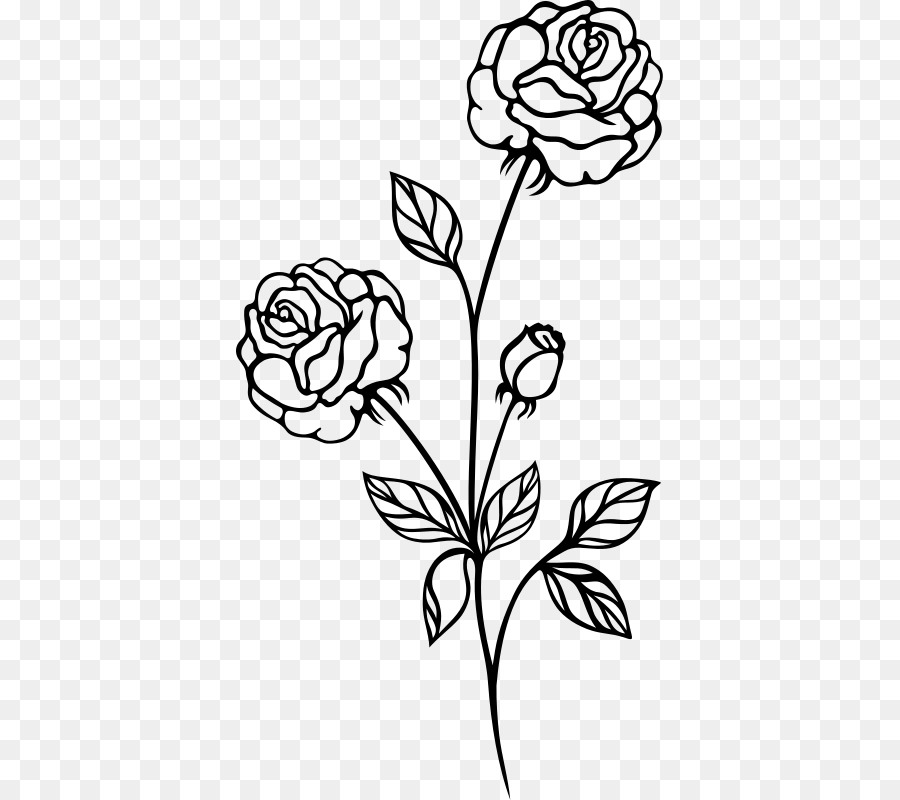 Rose Drawing Png & Free Rose Drawing.png Transparent Images.