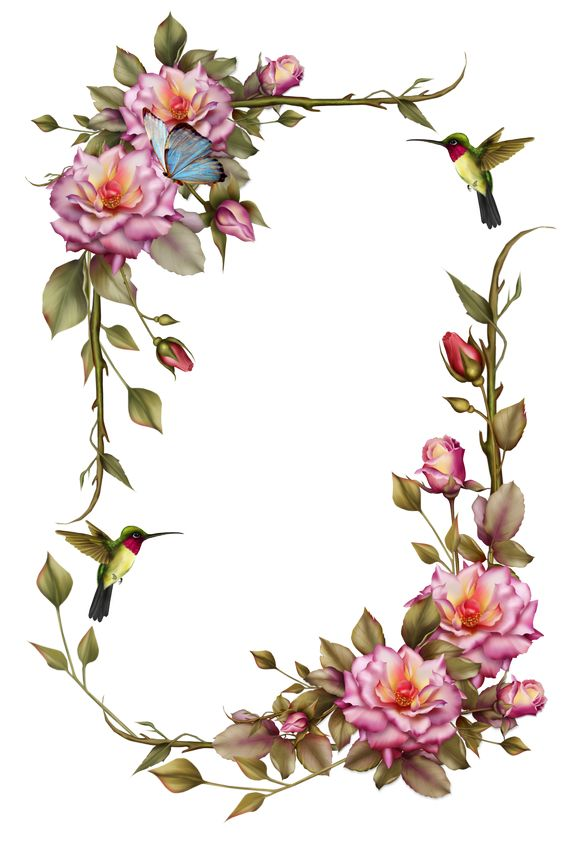 "Roses and Humming Bird Frame"" by collect."