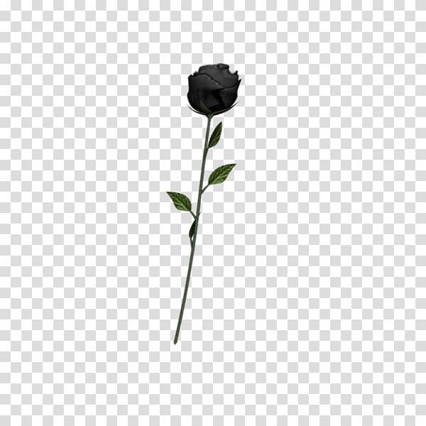 Black rose Art Emoji, undead transparent background PNG.