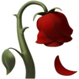 Wilted Flower Emoji (U+1F940).