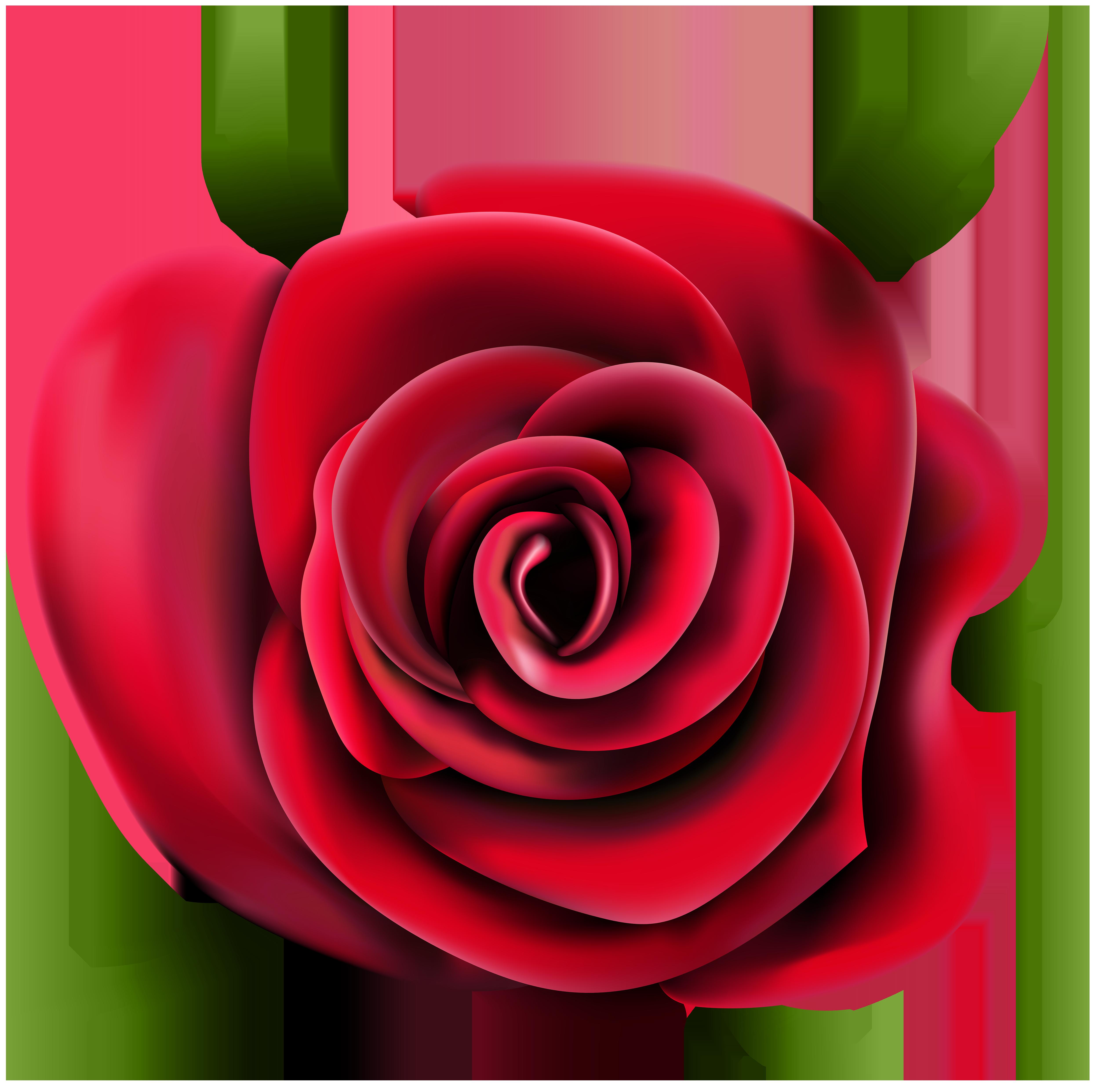Transparent Rose PNG Clip Art.