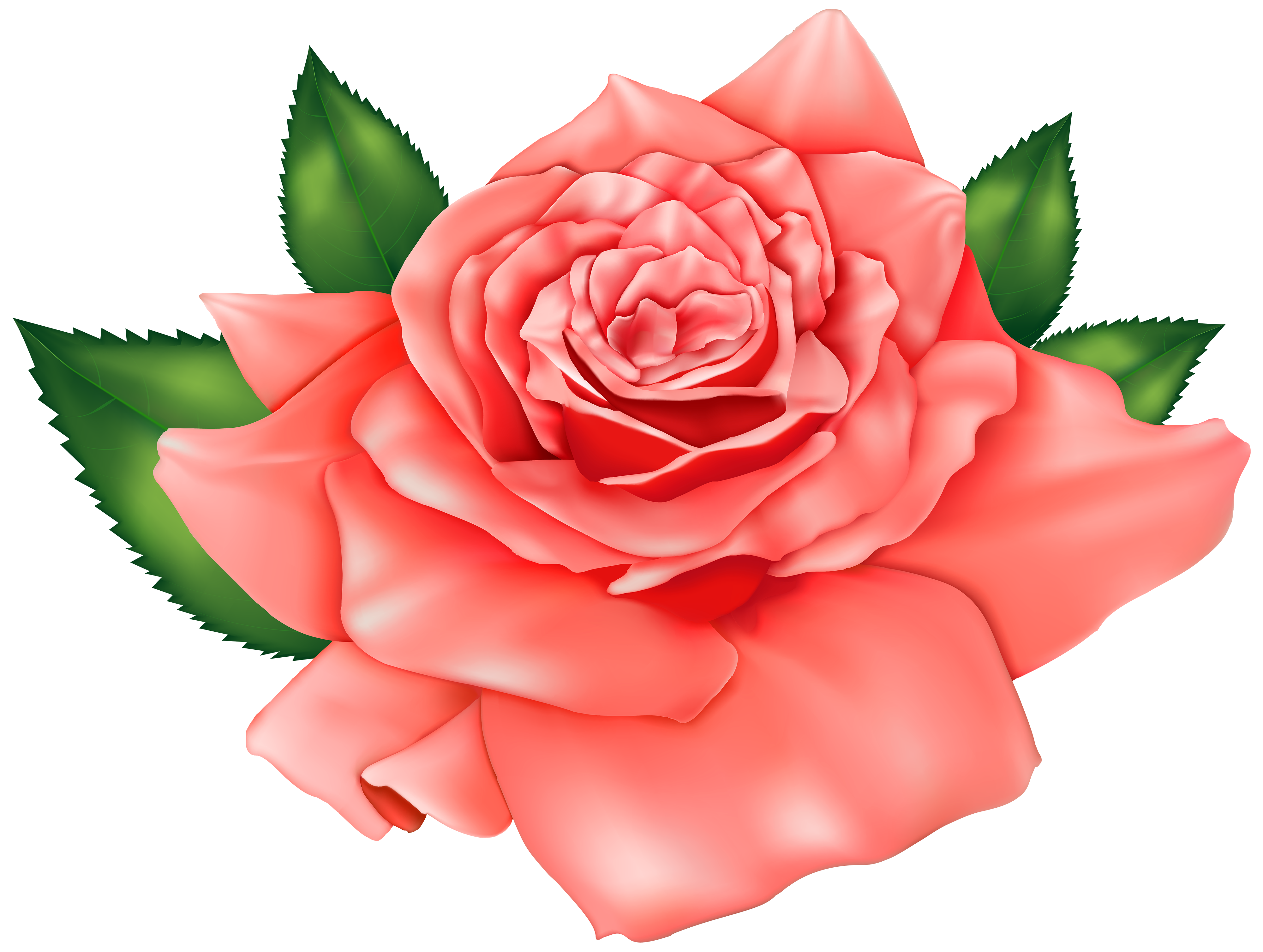 Rose Clipart (6773) Free Clipart Images — Clipartwork.
