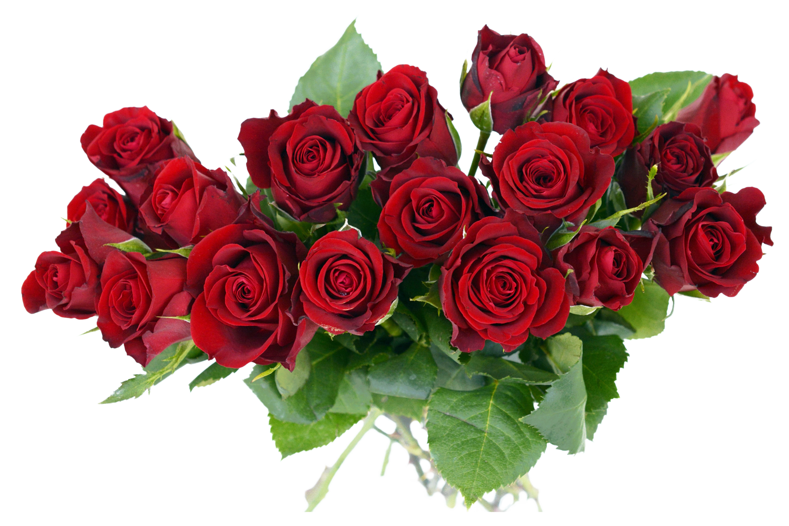 Rose Bouquet PNG Image.
