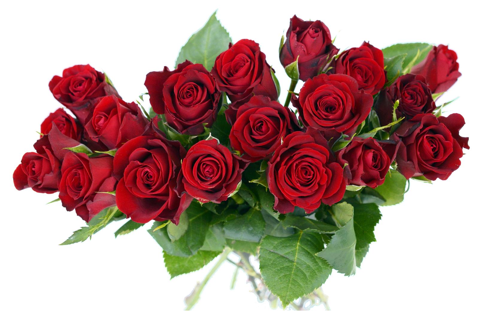 Rose Bouquet PNG Image.