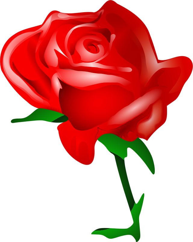 Red Rose Graphics.