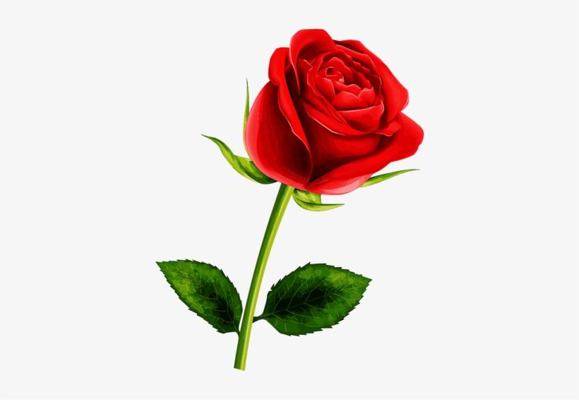 Roses Flower Clipart.