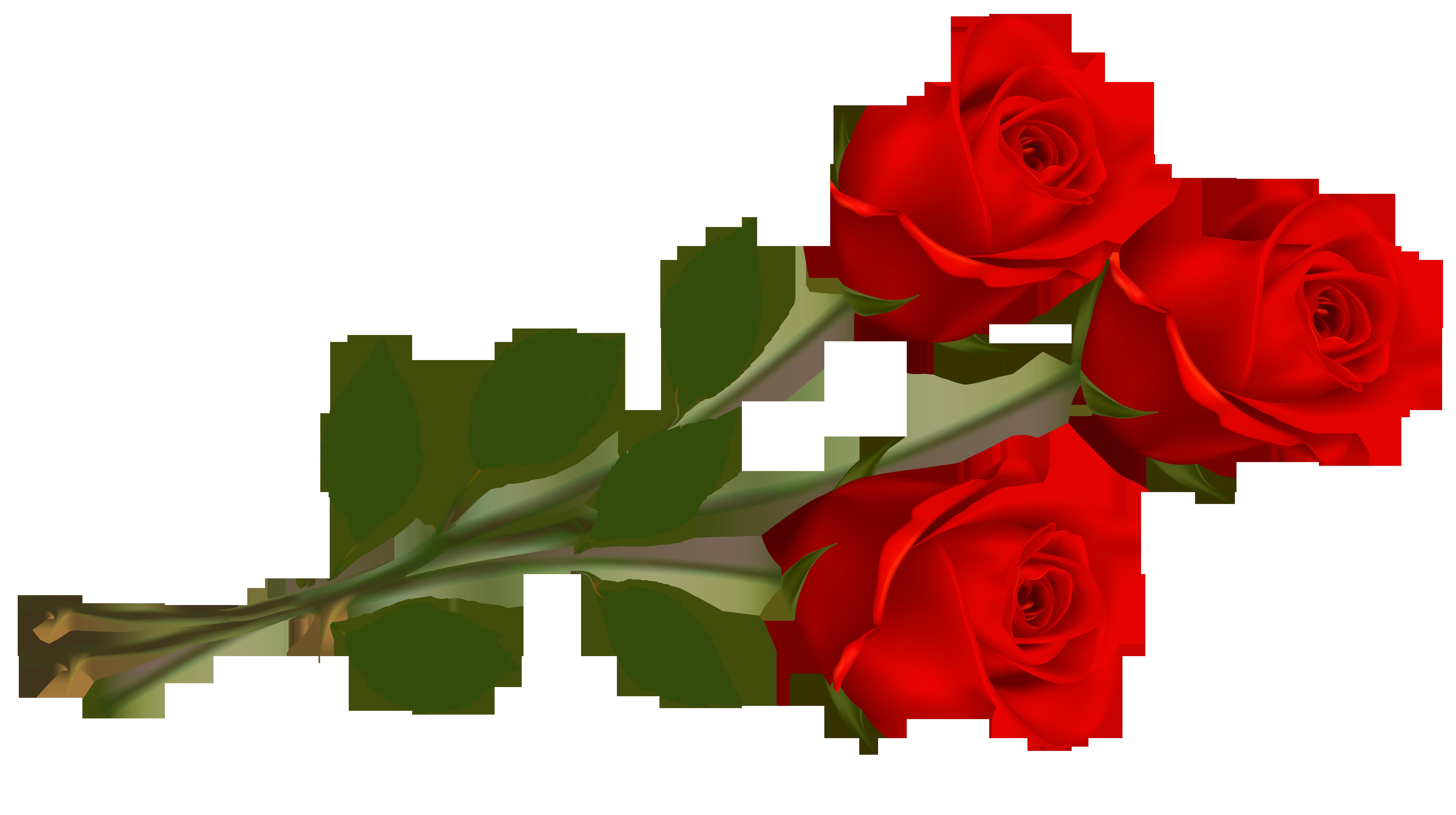 Clip Art Red Rose.