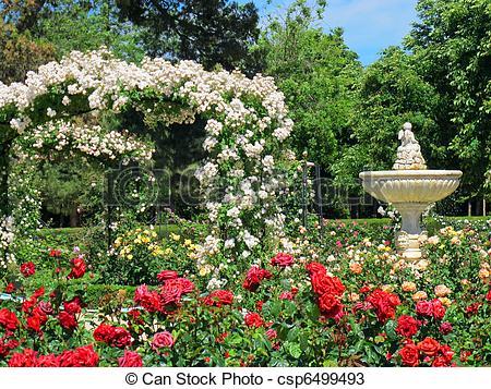 Stock Photos of rose garden and fountain.