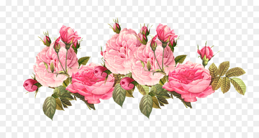 Pink flowers Rose Clip art.
