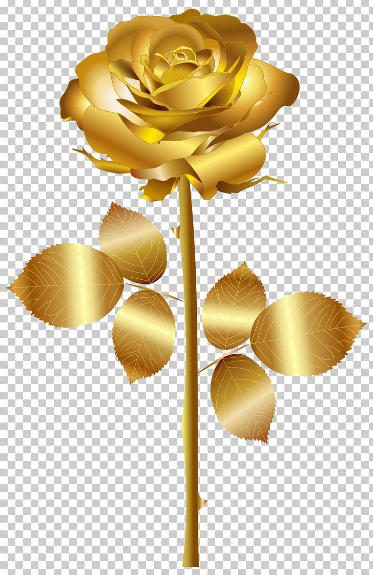 Rose Gold Flower PNG, Clipart, Blue Rose, Clip Art, Computer.