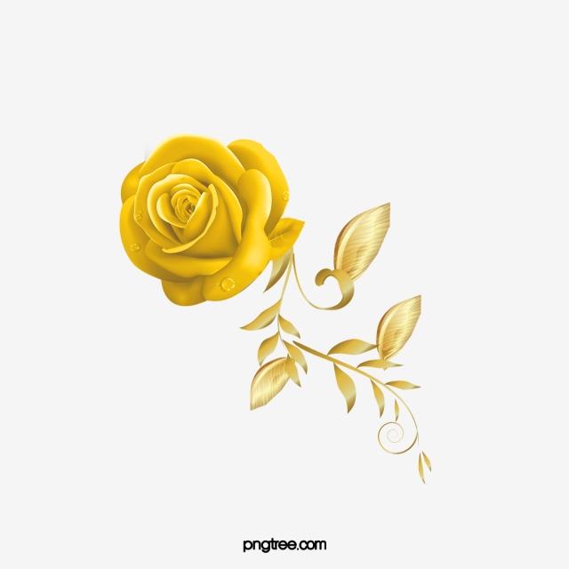 Golden Rose PNG Images.