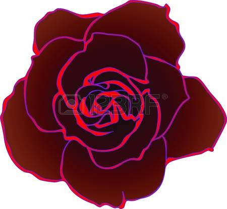 Rose Greenhouse Images & Stock Pictures. Royalty Free Rose.