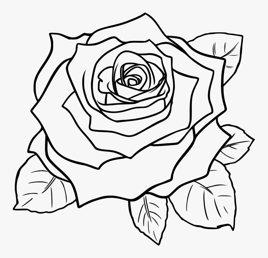 Art,symmetry,rose Order.