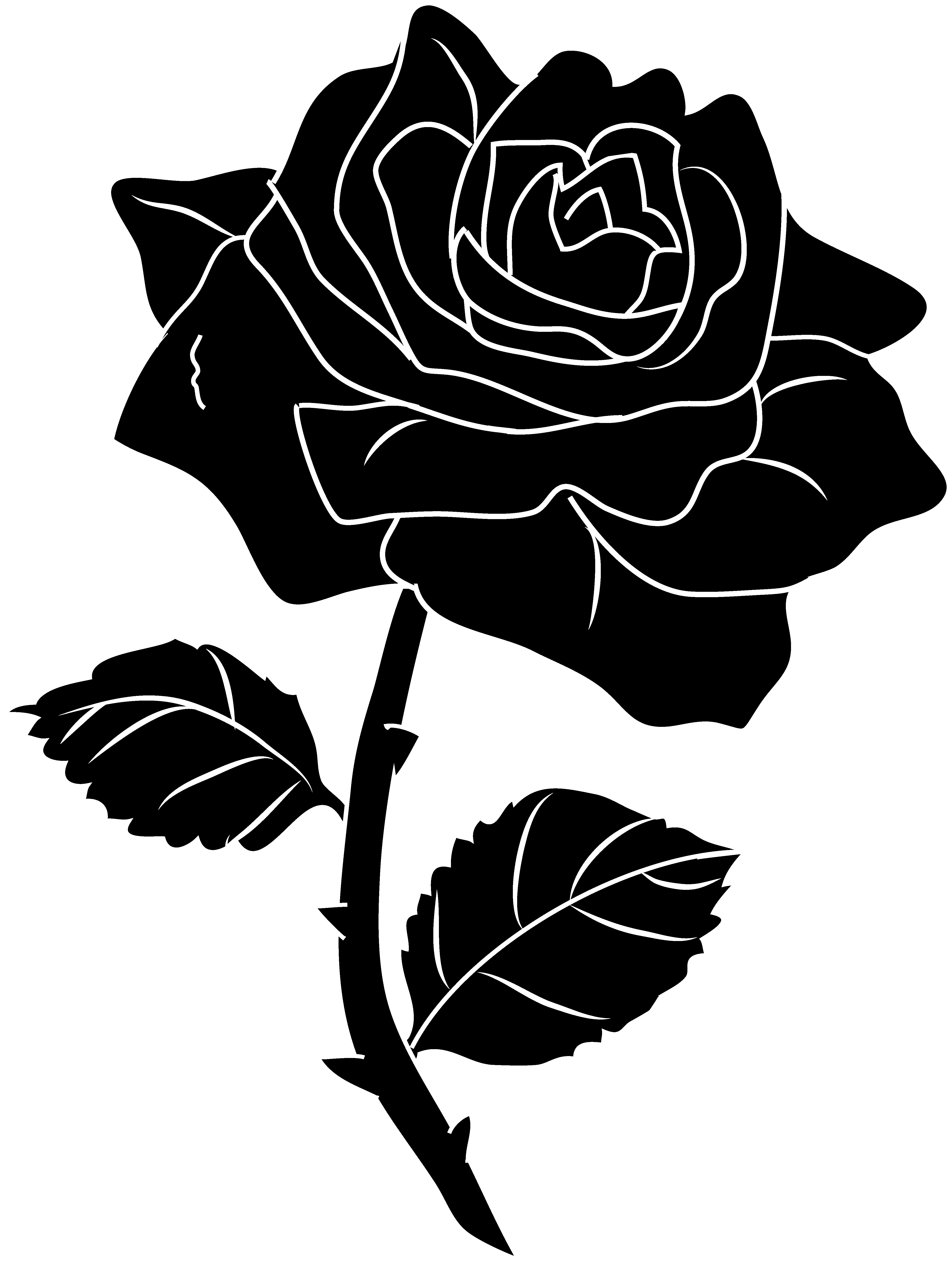 Rose Clipart Black And White & Rose Black And White Clip Art.