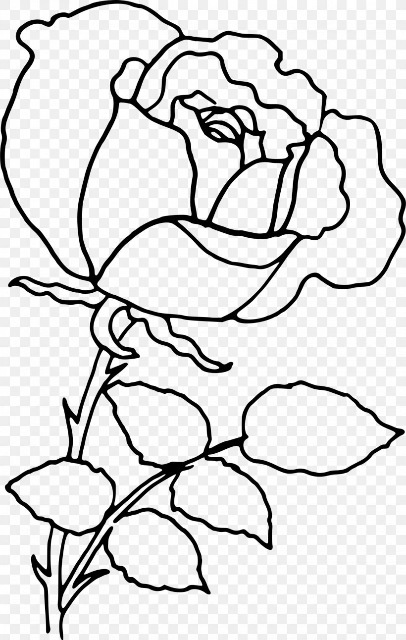 Rose Flower Drawing Clip Art, PNG, 1523x2400px, Rose, Area.