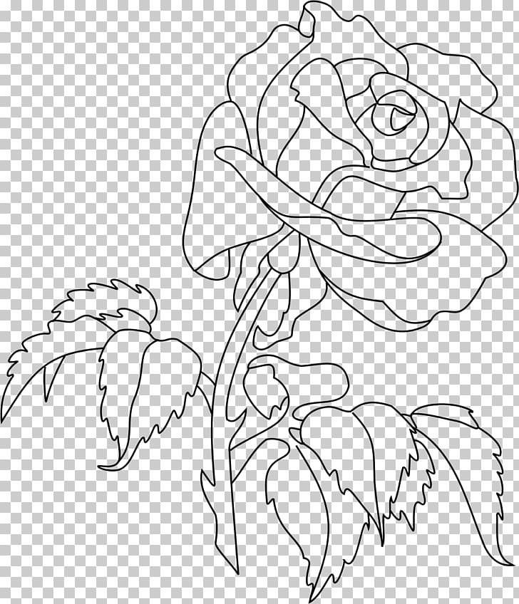 Rose Line art Drawing , rose tattoo PNG clipart.