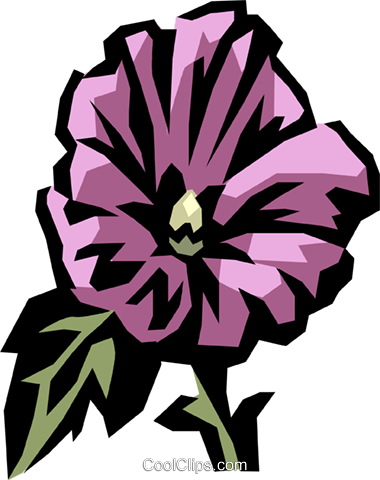 rose mallow Royalty Free Vector Clip Art illustration.