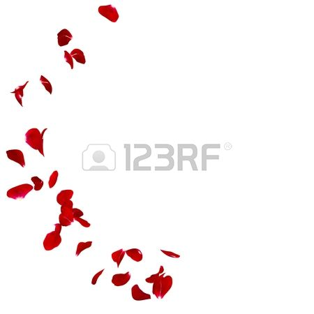 46,554 Rose Petals Cliparts, Stock Vector And Royalty Free Rose.