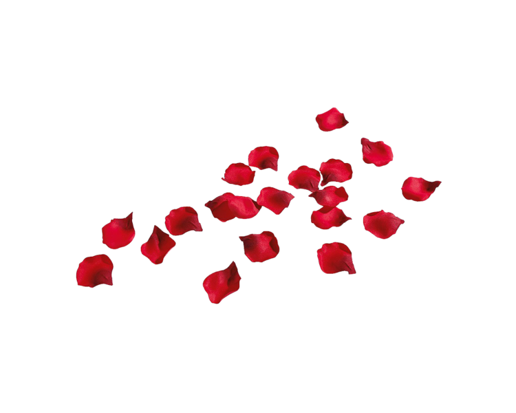 Rose Petals (PNG).