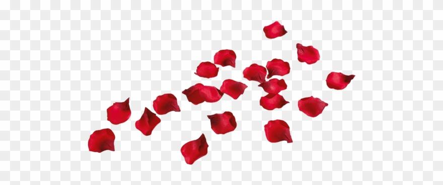 Rose Petals.