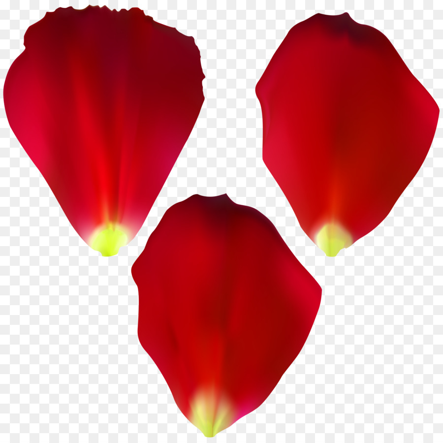 Rose petal clipart 4 » Clipart Station.