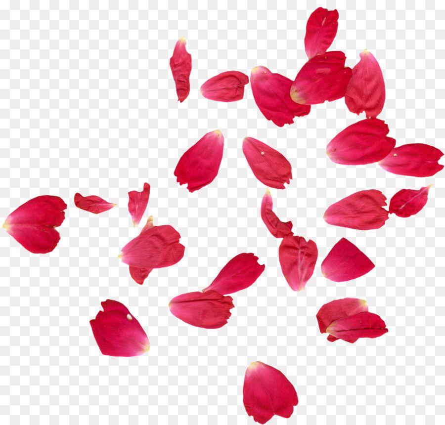 Faridabad Petal Rose Flower Henna.