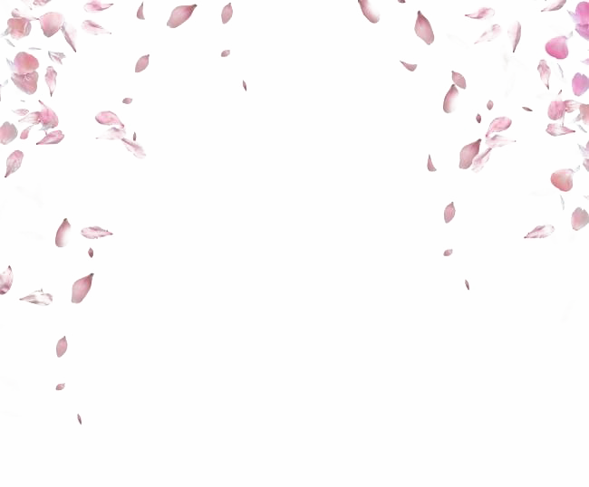 Petals PNG Images Transparent Free Download.