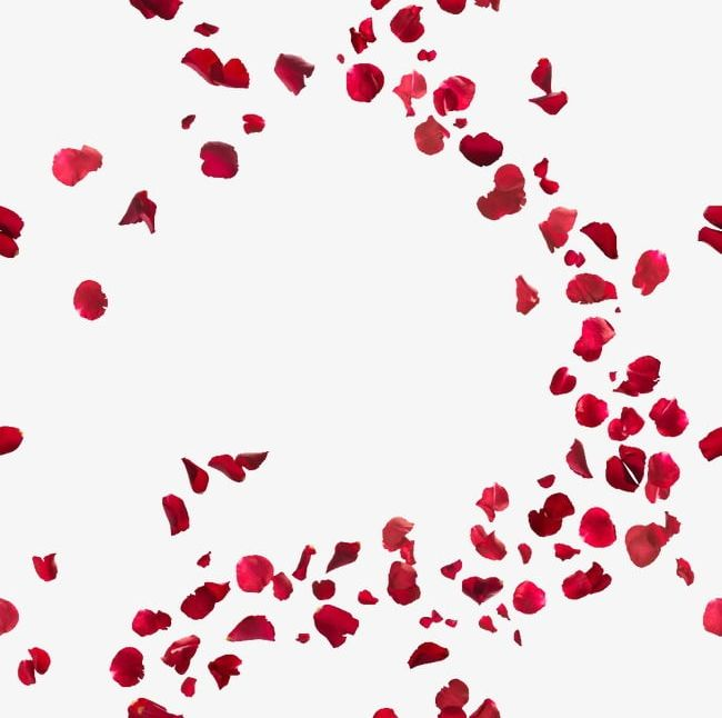 Rose Petal PNG, Clipart, Petal Clipart, Petal Clipart.