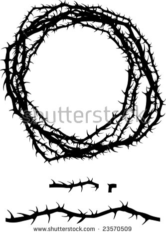 Rose Thorns Stock Images, Royalty.
