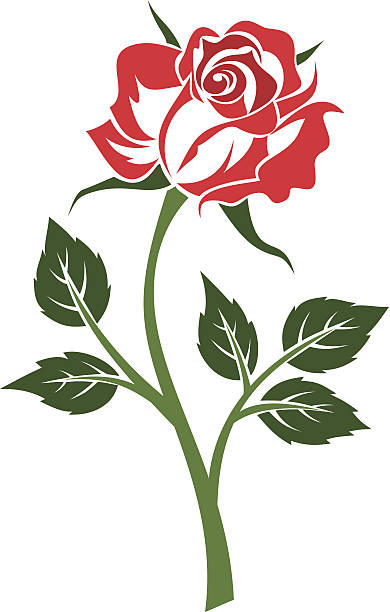 Silhouette Of The Rose Stem Tattoo Clip Art, Vector Images.