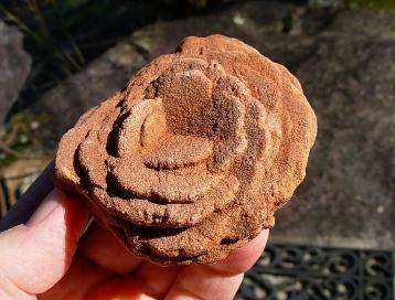 Desert Rose Rocks from SpiritRock Shop.