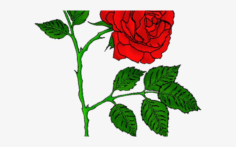 Rose Tattoo Clipart Picsart Png.