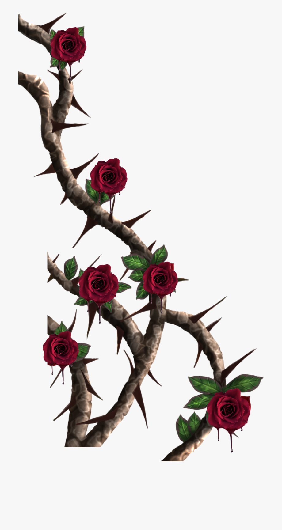 vines #roses #rose #vine #red #thorns #melting #drip.