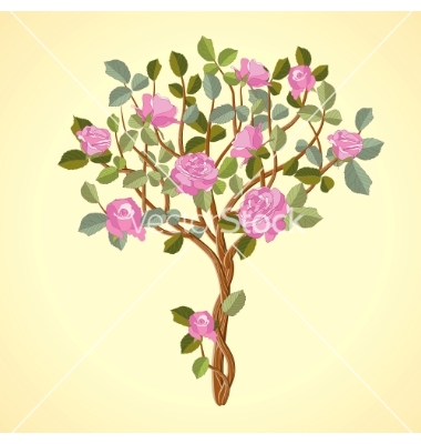 Rose tree clipart #9