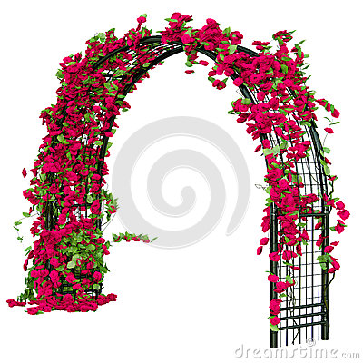 Red Rose Trellis Stock Illustrations.