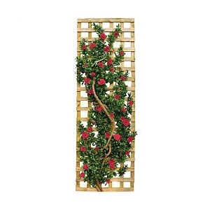 Flower vines on trellis clipart.