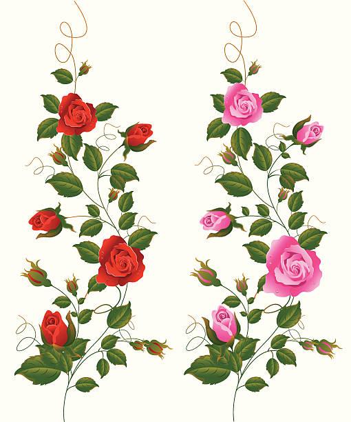 Rose vines clipart 1 » Clipart Station.