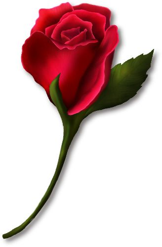 Clipart Red Rose Bud.