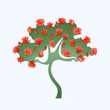Rosebush Stock Illustrations.