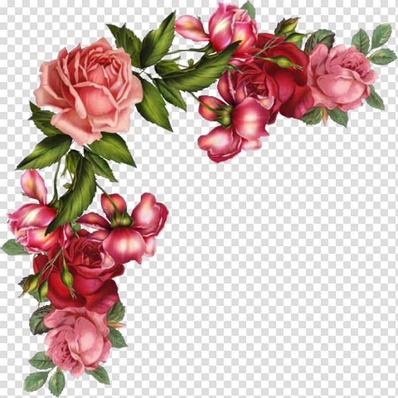 Red and pink roses border , Rose Flower Digital , flower.