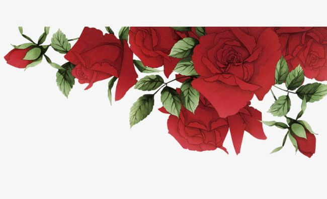 Romantic Red Roses Border PNG, Clipart, Border Clipart.