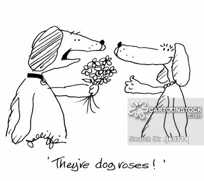 Dog Roses Cartoons and Comics.