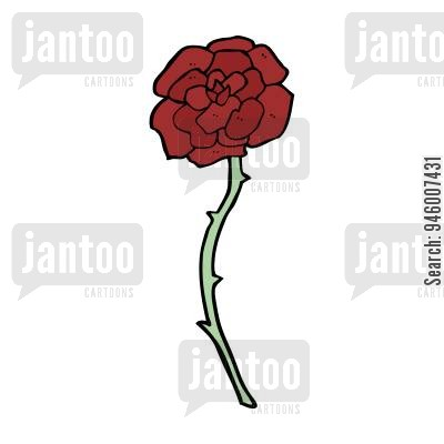 roses cartoons.