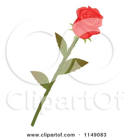 Cartoon Of A Beautiful Long Stemmed Pink Rose.