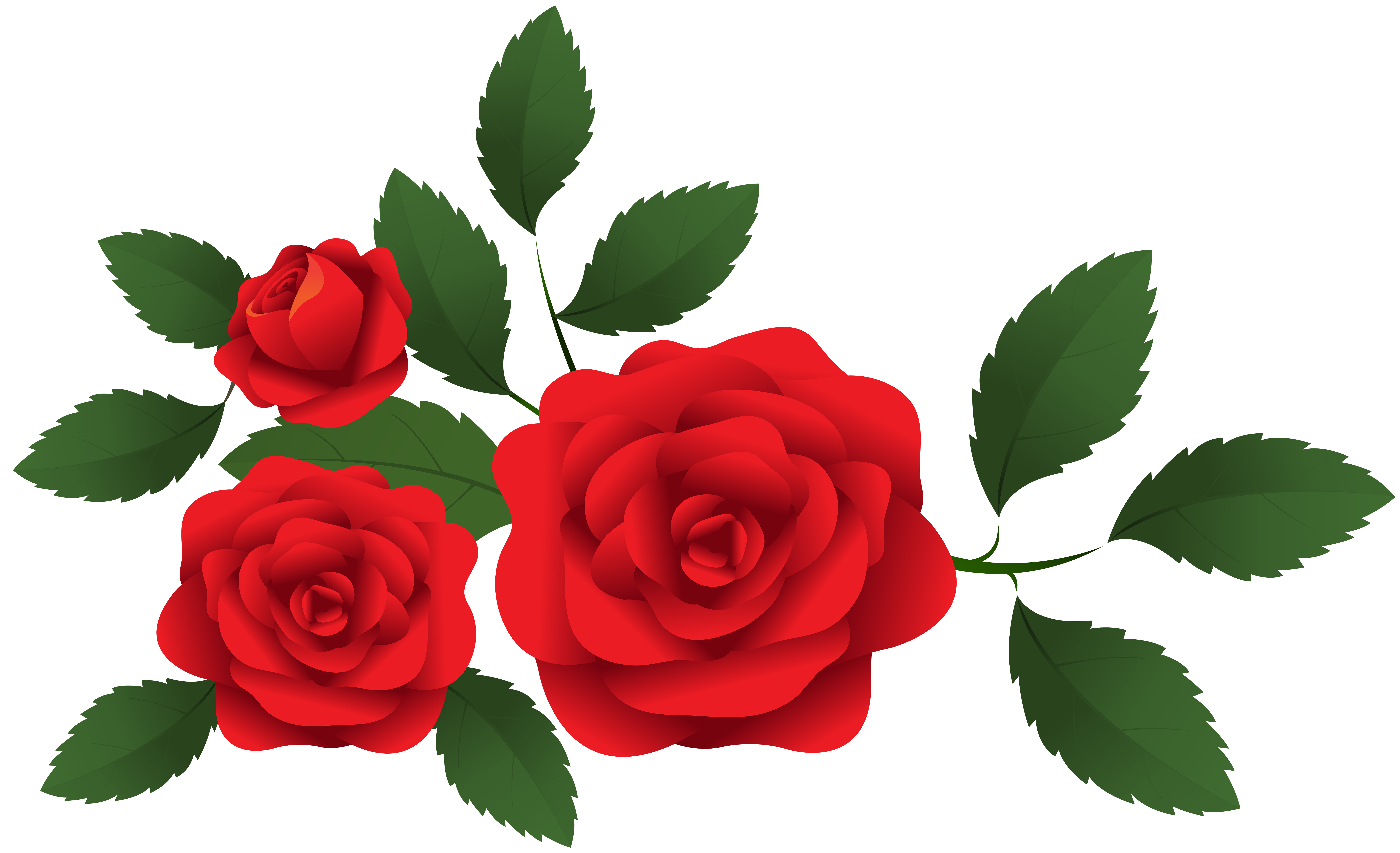 Red Roses Decoration PNG Clip Art.