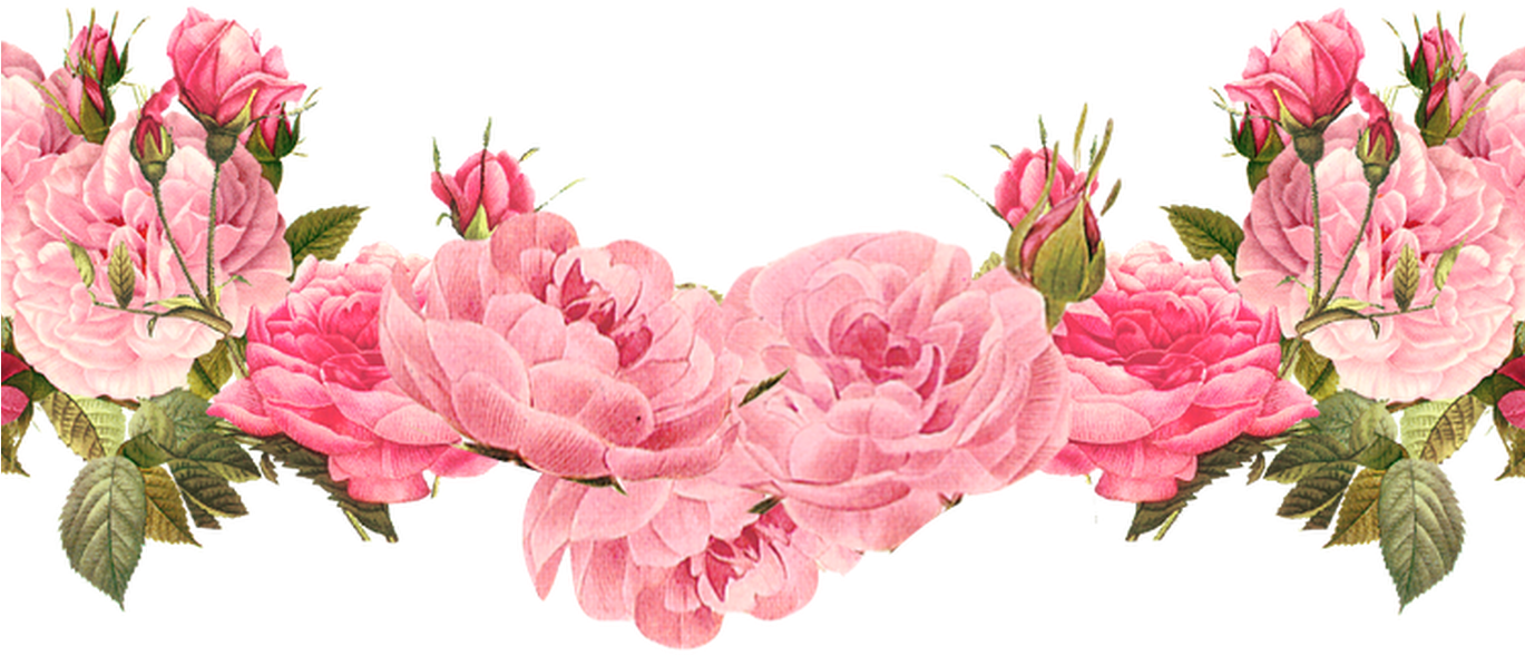 Free Rose Clipart Backgrounds Borders Clipart Collection.