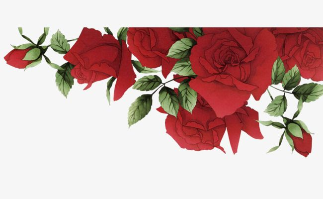 Romantic Red Roses Border, Free Material, Material, Romantic.