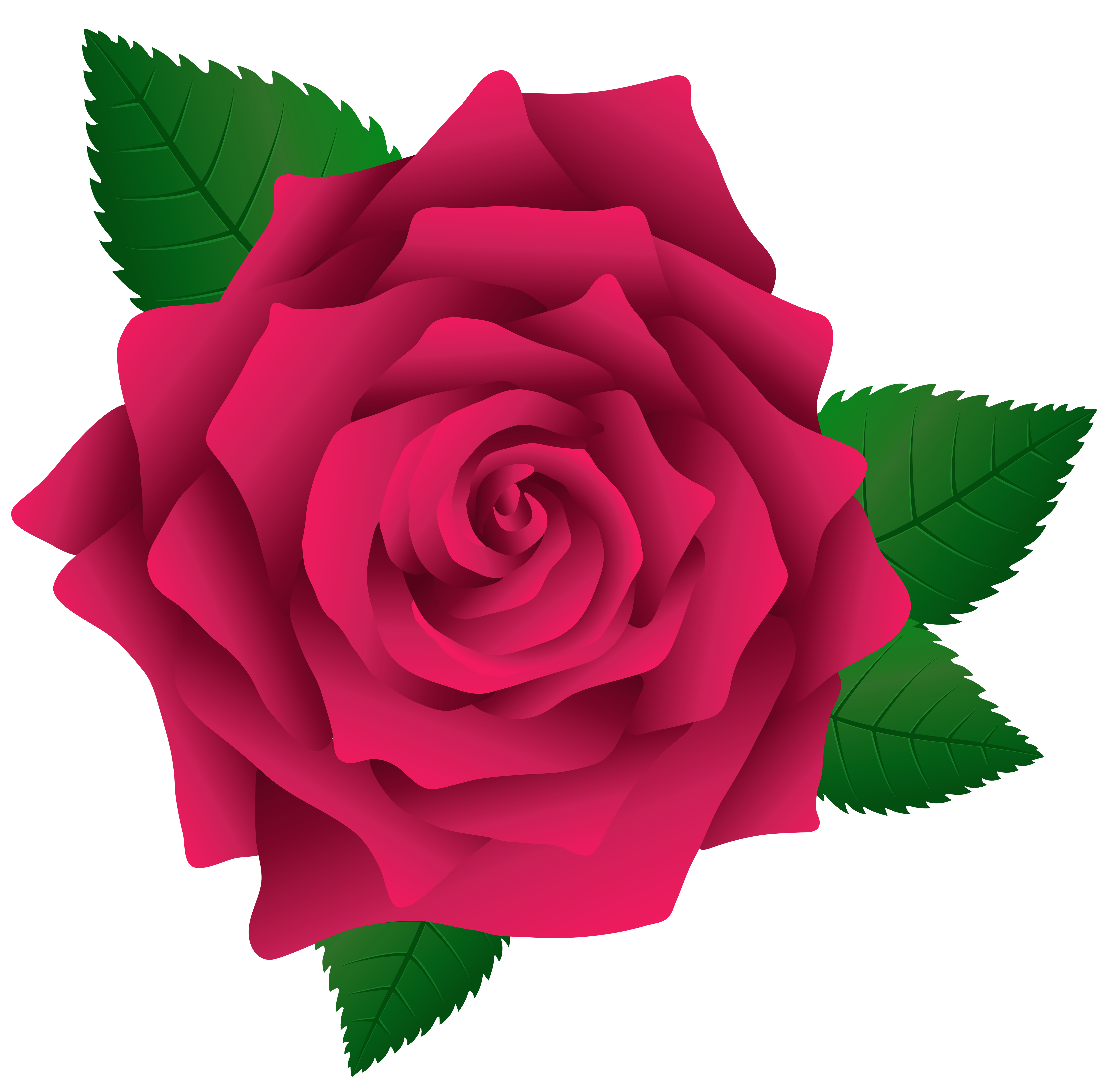 Pink Rose PNG Image Clipart.