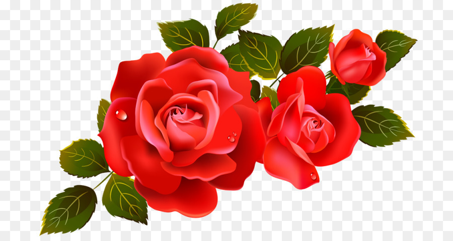 roses flowers clipart #4